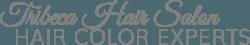 Tribeca Hair Salon, Hair Color Experts in Florida